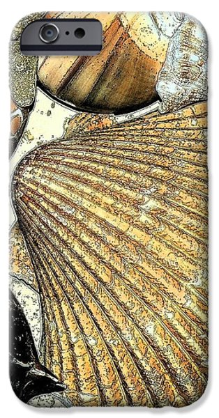 Art Shell 2 iPhone Case by Stephanie Troxell