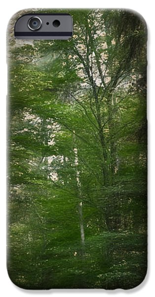 Norway iPhone Cases - Artistic High trees  iPhone Case by Leif Sohlman