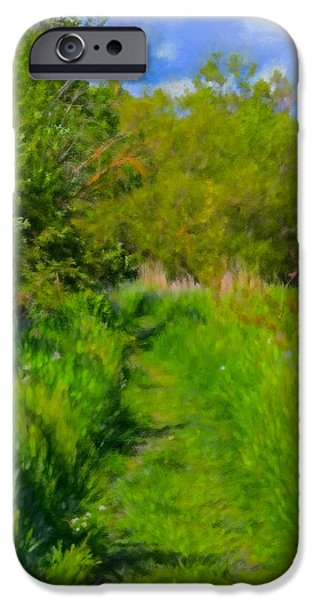 Pathway iPhone Cases - Artistic painterly Pathway May iPhone Case by Leif Sohlman