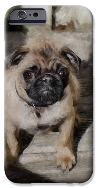 Puppies Digital iPhone Cases - Artistic painterly Pug iPhone Case by Leif Sohlman