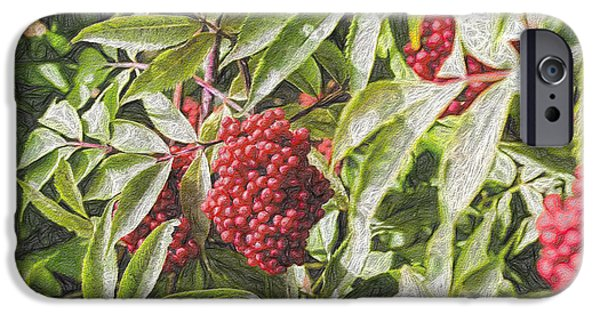 Berry iPhone Cases - Artistic Red iPhone Case by Leif Sohlman