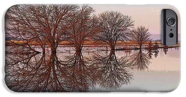 Reflection Of Trees iPhone Cases - Artistic Fancy iPhone Case by Tom Druin