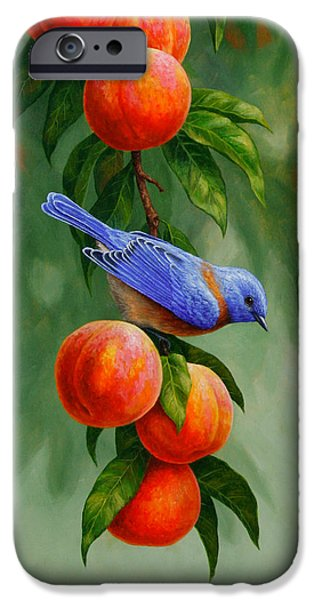 Fruit Tree iPhone Cases - Bird Painting - Bluebirds and Peaches iPhone Case by Crista Forest