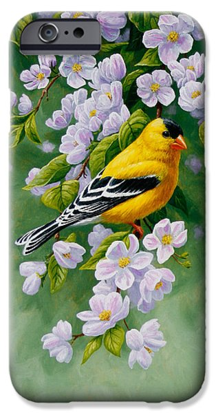 Apple Trees iPhone Cases - American Goldfinch Spring iPhone Case by Crista Forest