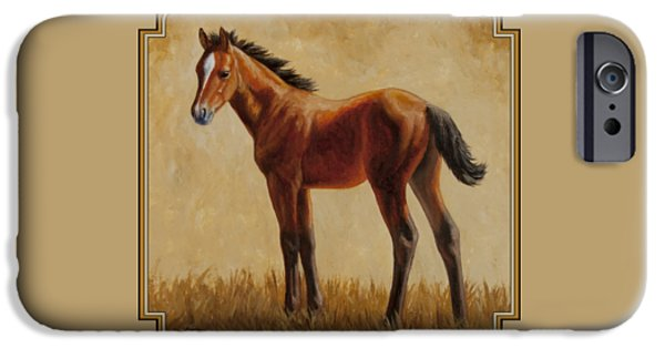 Filly iPhone Cases - Afternoon Glow iPhone Case by Crista Forest