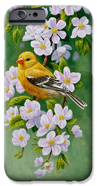 Fruit Tree iPhone Cases - Goldfinch Blossoms Greeting Card 2 iPhone Case by Crista Forest