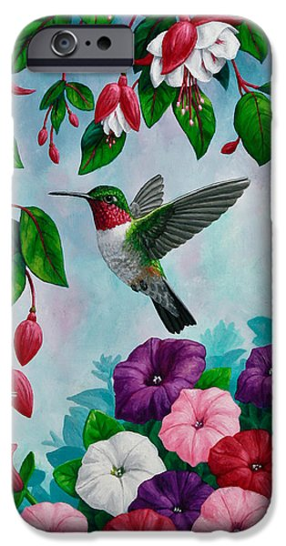 Fuchsia iPhone Cases - Bird Painting - Hummingbird Heaven iPhone Case by Crista Forest