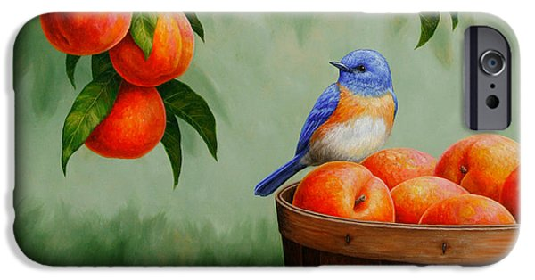Fruit Tree iPhone Cases - Bluebird and Peaches Greeting Card 3 iPhone Case by Crista Forest