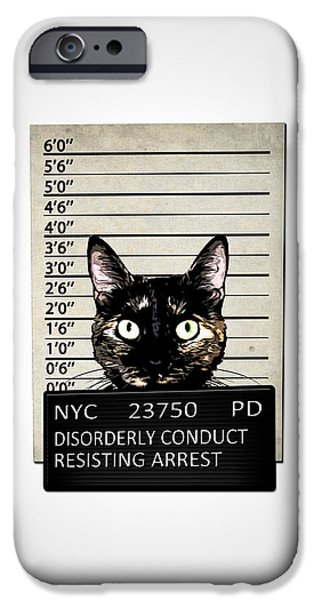Feline iPhone Cases - Kitty Mugshot iPhone Case by Nicklas Gustafsson