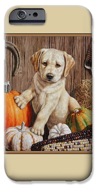 Puppies iPhone Cases - Pumpkin Puppy iPhone Case by Crista Forest