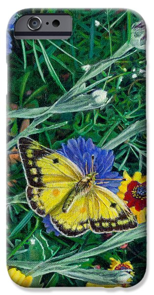 Garden Scene Paintings iPhone Cases - Butterfly Wildflowers spring time garden floral oil painting green yellow iPhone Case by Walt Curlee