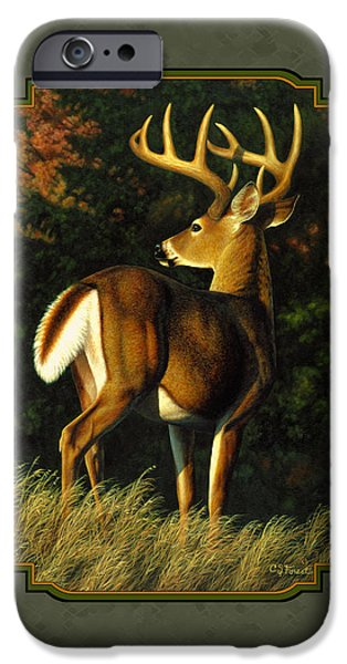 Whitetail Deer iPhone Cases - Whitetail Buck - Indecision iPhone Case by Crista Forest