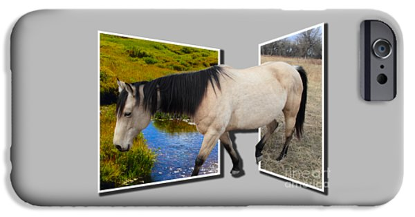 Creek Mixed Media iPhone Cases - The Grass Is Always Greener On The Other Side iPhone Case by Shane Bechler