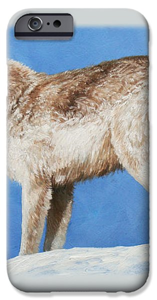 Snowy Wolf iPhone Case by Crista Forest