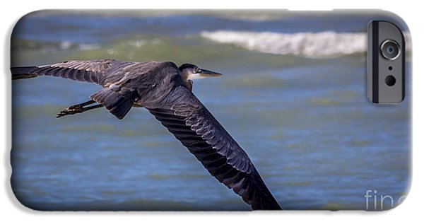 Sea Birds Photographs iPhone Cases - As Easy As This iPhone Case by Marvin Spates