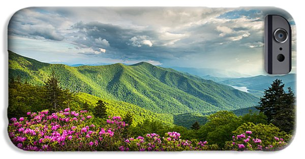 Epic iPhone Cases - Asheville NC Blue Ridge Parkway Spring Flowers iPhone Case by Dave Allen