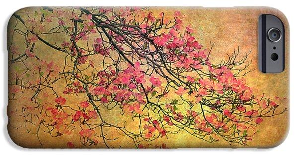 Botanical iPhone Cases - Asian Dogwood iPhone Case by Jessica Jenney