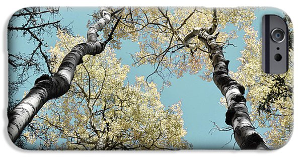 Tree Art Print iPhone Cases - Aspen Brilliance iPhone Case by Andrea Hazel Ihlefeld