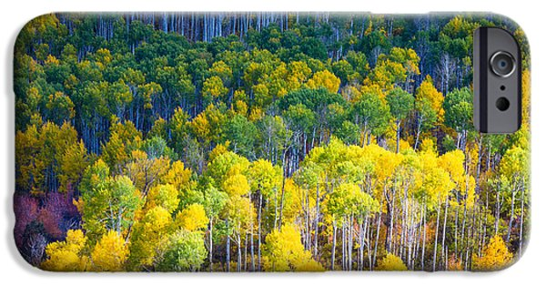 Fall Foliage iPhone Cases - Aspen HIllside iPhone Case by Inge Johnsson