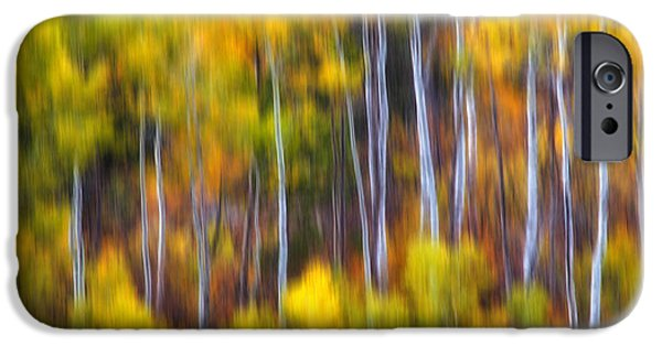 Tree Art Print iPhone Cases - Aspens Alive iPhone Case by Darren  White