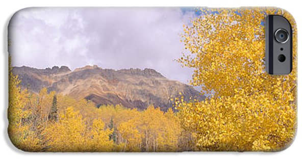 Mountain iPhone Cases - Aspens In San Juan Mountains iPhone Case by Panoramic Images