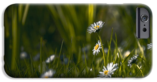 Close Up Floral iPhone Cases - Aspire iPhone Case by Chris Fletcher