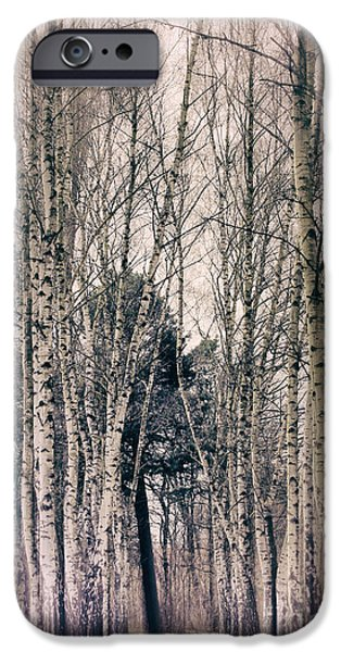 Abstract Digital iPhone Cases - Ast Birch iPhone Case by SK Pfphotography