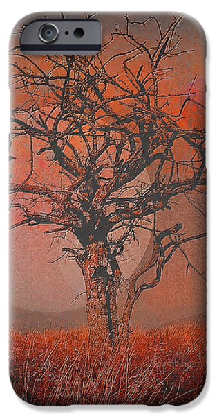 at Dusk iPhone Case by Mimulux patricia no
