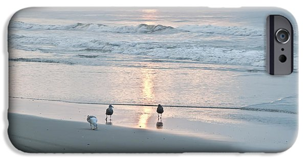 Seagull iPhone Cases - At the Start of the Day iPhone Case by Bill Cannon