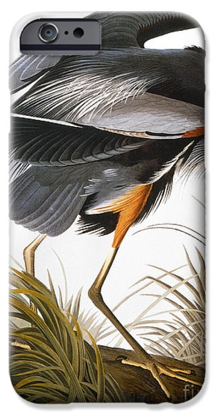 AUDUBON: HERON iPhone Case by Granger