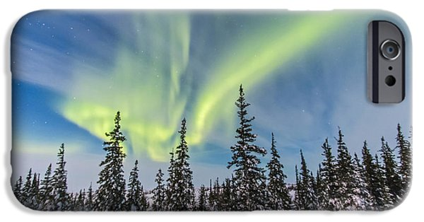 Nature Study iPhone Cases - Aurora Borealis Over The Trees iPhone Case by Alan Dyer