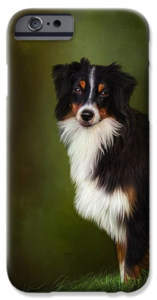 Dog Close-up iPhone Cases - Australian Shepherd iPhone Case by Sandy Oman