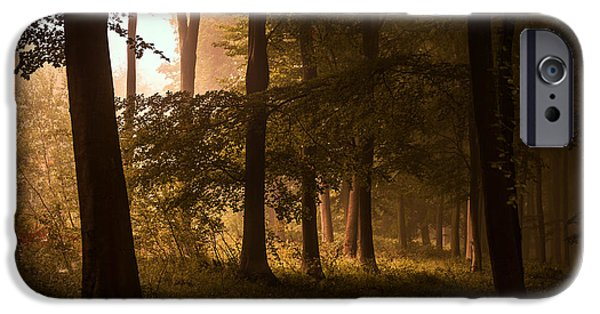 Fall iPhone Cases - Autumn Forest iPhone Case by Ian Hufton