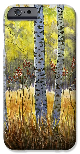 Sienna iPhone Cases - Autumn Birch Trees in Shadow iPhone Case by Sharon Freeman