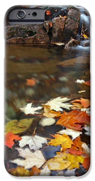 Down East iPhone Cases - Autumn Cascade iPhone Case by Juergen Roth