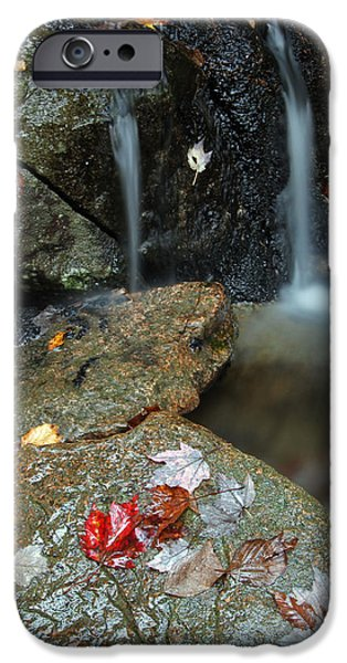 Down East iPhone Cases - Autumn Cascades iPhone Case by Juergen Roth