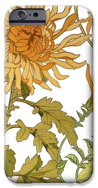 Chrysanthemum iPhone Cases - Autumn Chrysanthemums I iPhone Case by Mindy Sommers