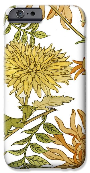 Chrysanthemum iPhone Cases - Autumn Chrysanthemums II iPhone Case by Mindy Sommers