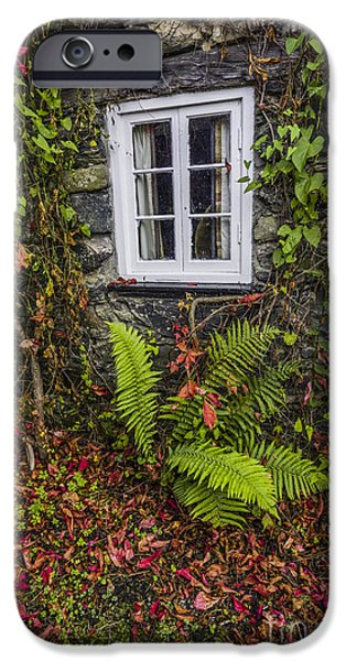 White House iPhone Cases - Autumn Cottage Window iPhone Case by Ian Mitchell