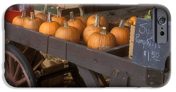 Farmstand iPhone Cases - Autumn Farmstand iPhone Case by John Burk