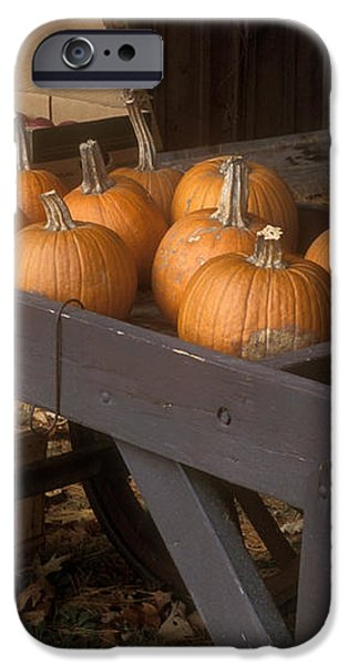 Autumn Farmstand iPhone Case by John Burk