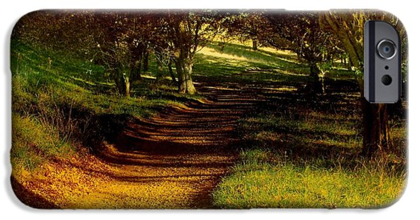 Pathway iPhone Cases - Autumn Feel iPhone Case by Nancy Pauling