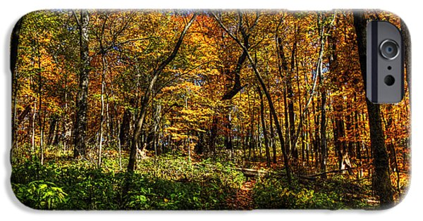 Mounds iPhone Cases - Autumn Forest Path at Johnsons Mound iPhone Case by Roger Passman