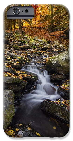 Overcast Day iPhone Cases - Autumn glory at Bushkill Falls State Park Pennsylvania USA iPhone Case by Vishwanath Bhat