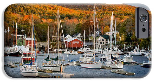 Mid-coast Maine iPhone Cases - Autumn Gold iPhone Case by Susan Cole Kelly