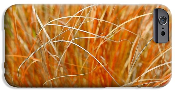 Nature Abstract iPhone Cases - Autumn Grass Abstract iPhone Case by Art Block Collections