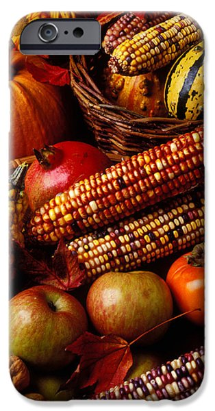 Gourd iPhone Cases - Autumn harvest  iPhone Case by Garry Gay