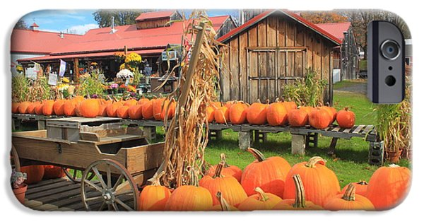 Farmstand iPhone Cases - Autumn Harvest Pumpkins and Sugar House iPhone Case by John Burk