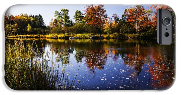 Reflections Of Sky In Water iPhone Cases - Autumn in Maine USA iPhone Case by Vishwanath Bhat