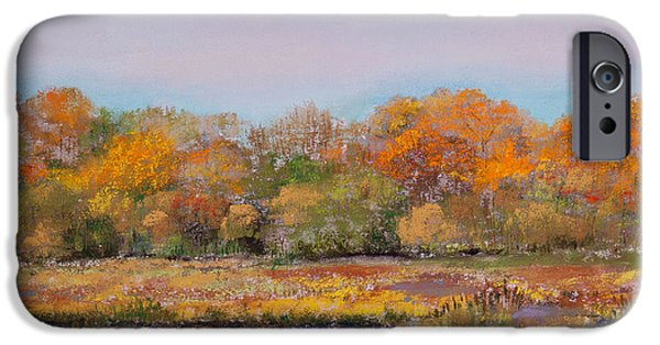 Autumn Pastels iPhone Cases - Autumn in the Adirondack Mountains iPhone Case by David Patterson